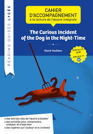 Reading guide - The curious incident of the dog in the Night-Time