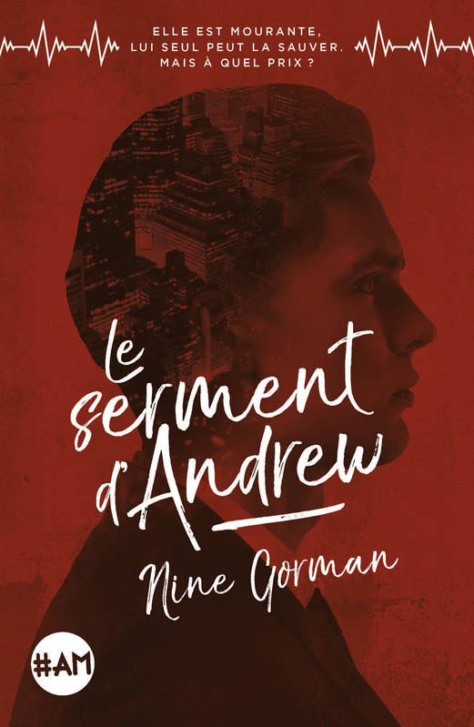 Le Serment d'Andrew -tome 2