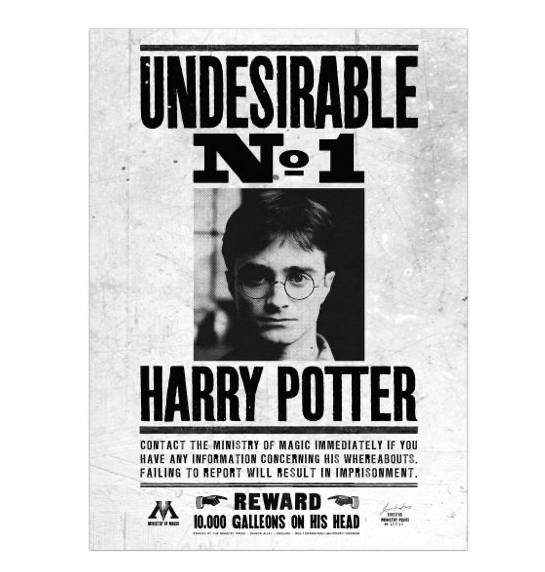 Poster Undesirable N°1 Notice