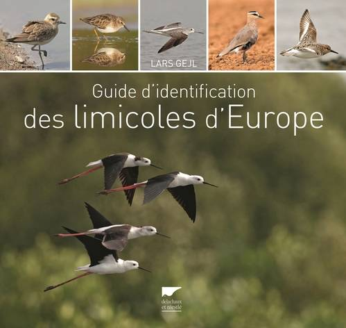 Guide d'identification des limicoles d'Europe