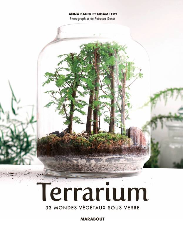 livre terrarium 33 mondes v g taux sous verre noam levy anna bauer marabout jardin. Black Bedroom Furniture Sets. Home Design Ideas