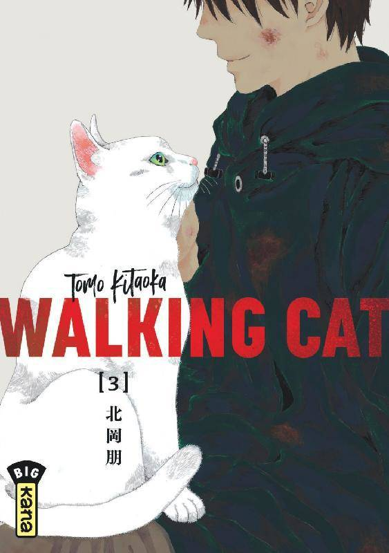 1, Walking cat