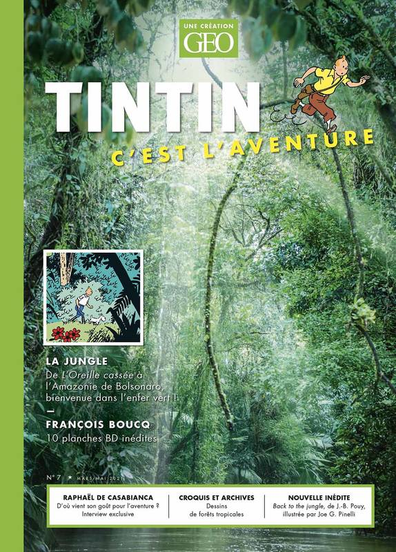 Tintin - C'est l'aventure 7, La jungle