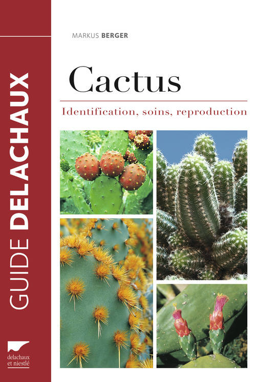 Cactus, Identification, soins, reproduction