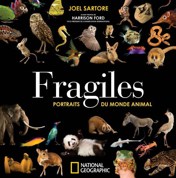 Fragiles / portraits du monde animal