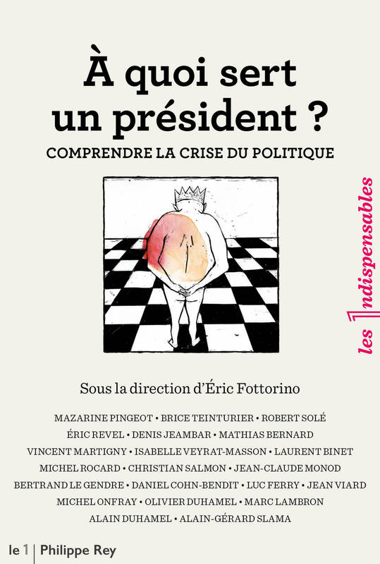 ebook a quoi sert un pr sident comprendre la crise du politique eric fottorino philippe rey. Black Bedroom Furniture Sets. Home Design Ideas