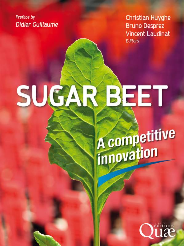 Sugar beet, A competitive innovation