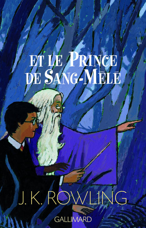 Harry Potter., Harry Potter, VI : Harry Potter et le Prince de Sang-Mêlé, 6