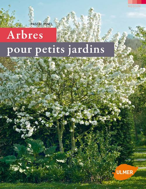 livre arbres pour petits jardins pascal pinel ulmer medium 9782841383320. Black Bedroom Furniture Sets. Home Design Ideas