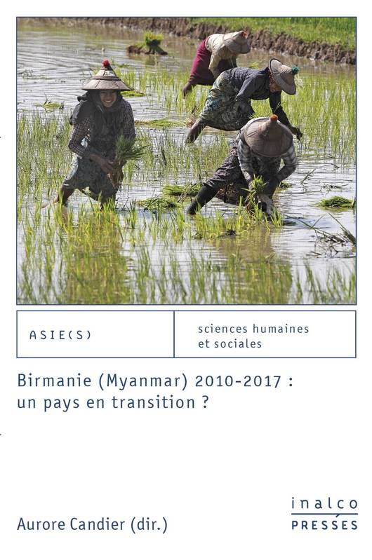 Birmanie, Myanmar, 2010-2017, un pays en transition ?, Un pays en transition ?