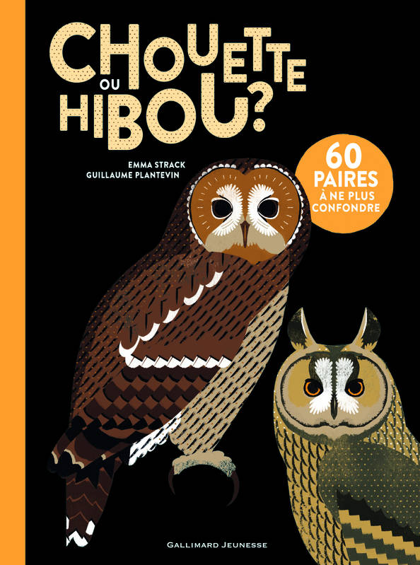 livre chouette ou hibou emma strack gallimard jeunesse albums documentaires 9782070659807. Black Bedroom Furniture Sets. Home Design Ideas