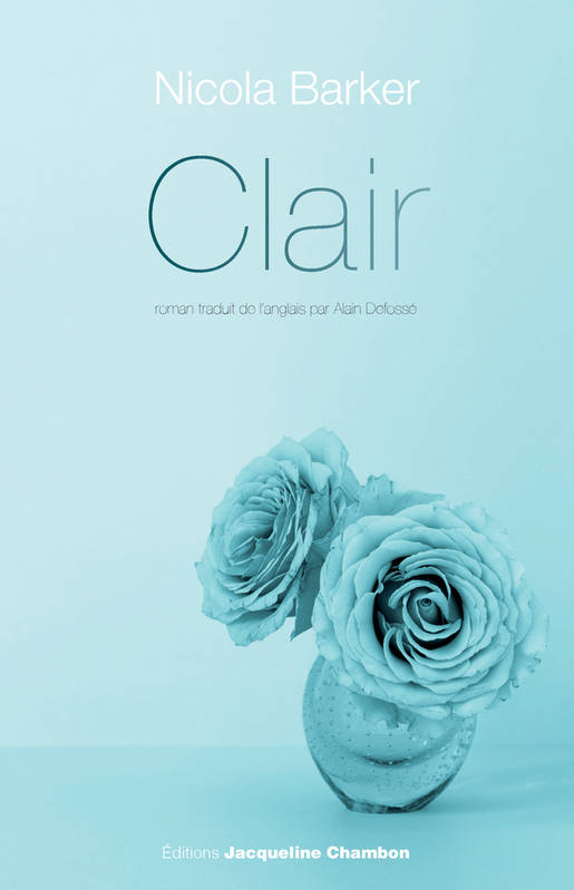 Clair : Un roman transparent