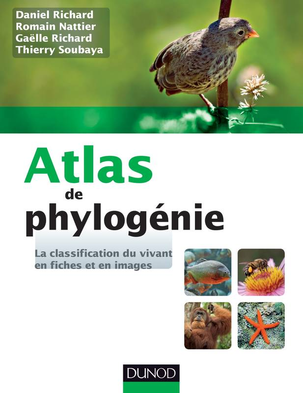 Atlas de phylogénie - La classification du vivant en fiches et en images, La classification du vivant en fiches et en images