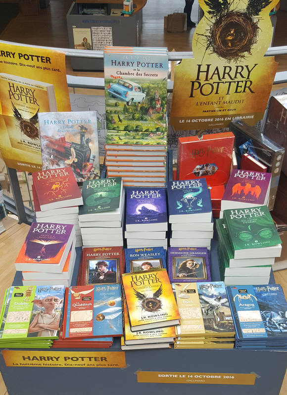Harry Potter : la saga continue