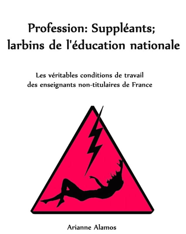 Profession : Suppléants ; larbins de l'Education Nationale, Les véritables conditions de travail des enseignants non-titulaires en France