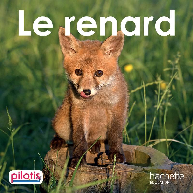 Lecture CP - Collection Pilotis - Le Renard - Album - Edition 2019