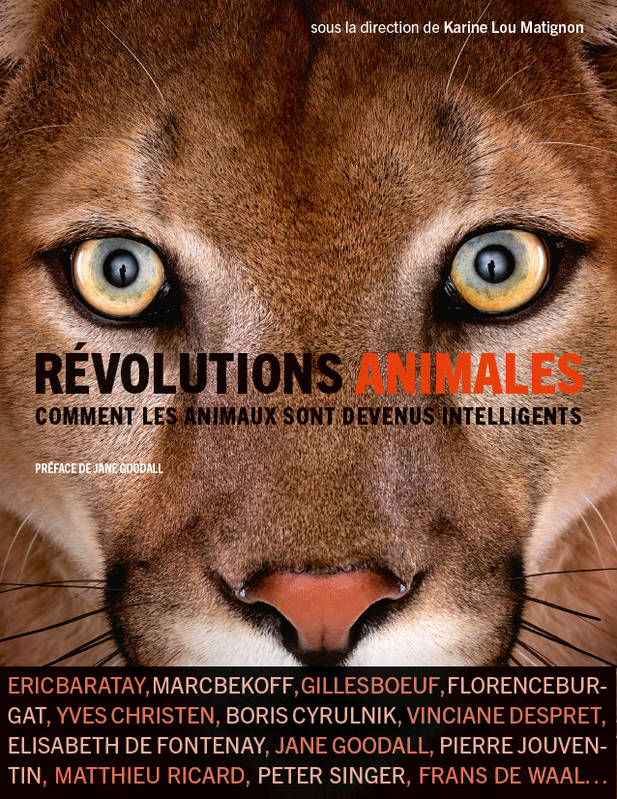 Révolutions animales, Comment les animaux sont devenus intelligents ?