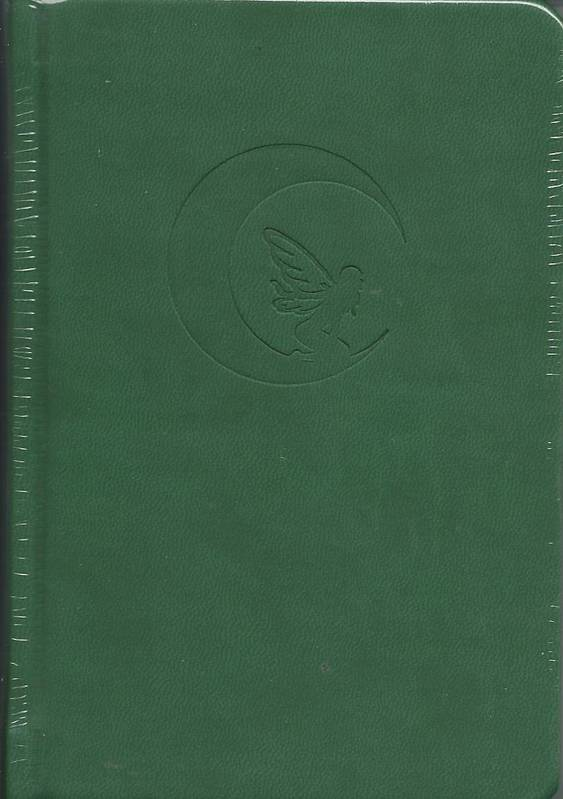 Carnet de notes. Couverture verte : la lune et la fée. 192 pages. 95 X140