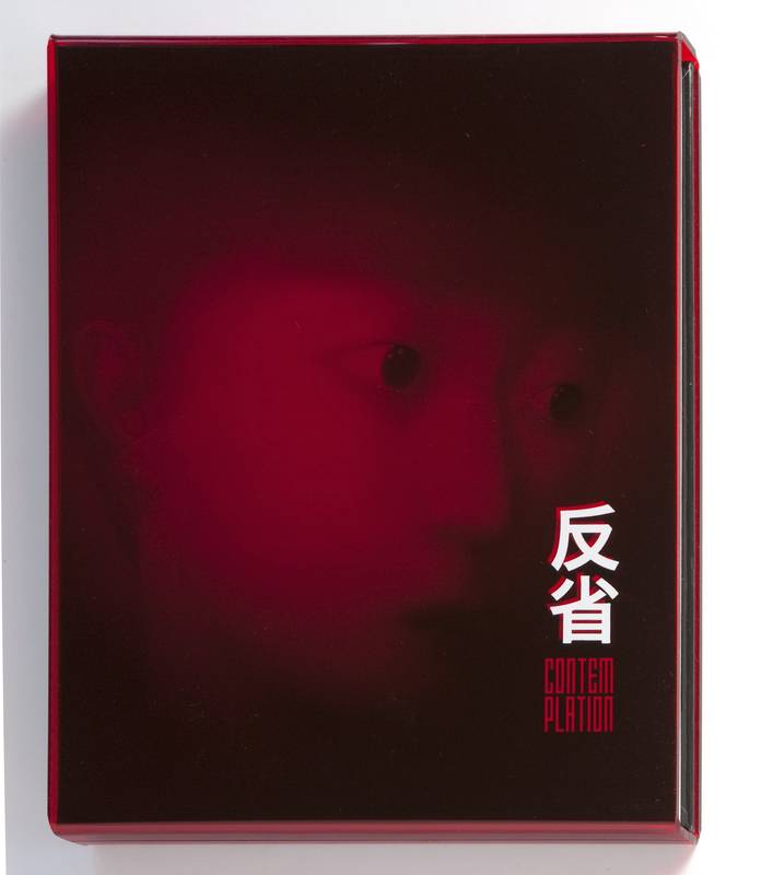 CONTEMPLATION/CONTESTATION - UNE COLLECTION D'ART CONTEMPORAIN CHINOIS