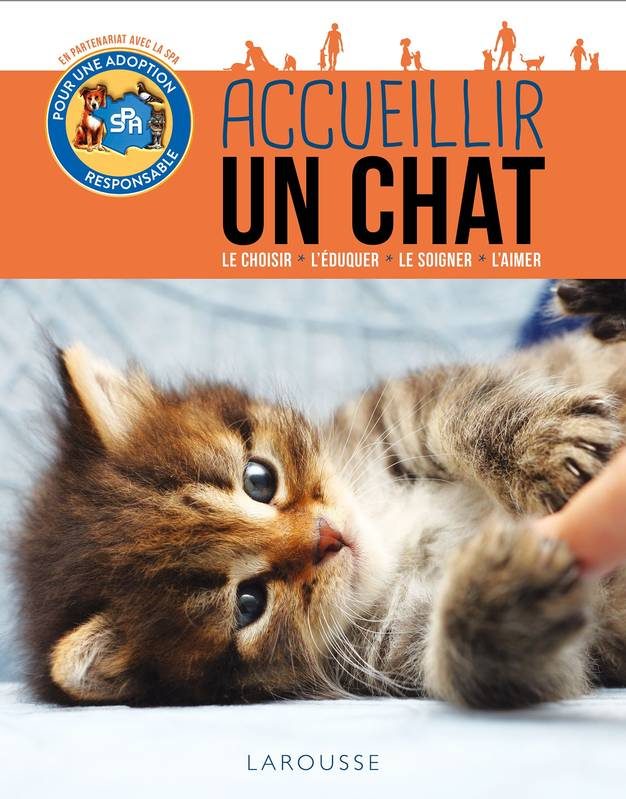 Accueillir un chat