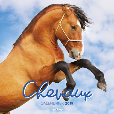 Calendrier mural Chevaux 2019