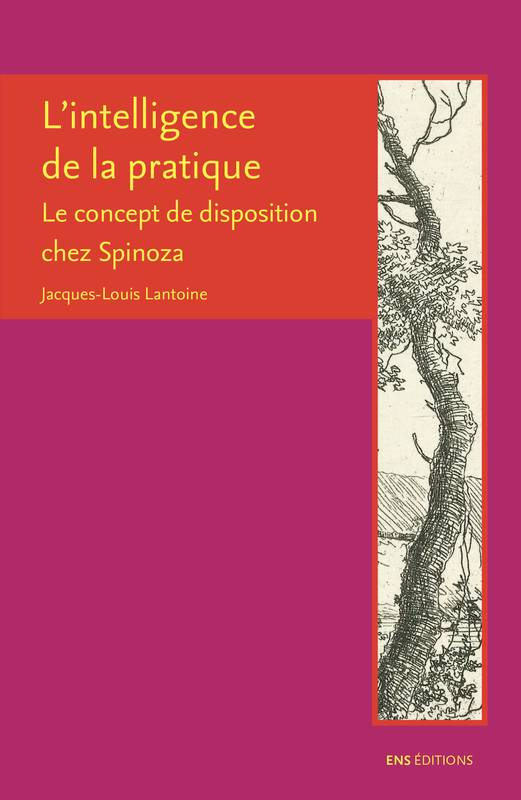 L'intelligence de la pratique, Le concept de disposition chez Spinoza