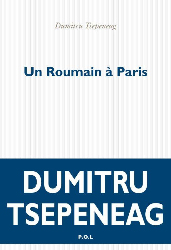 Un Roumain à Paris, Pages de journal