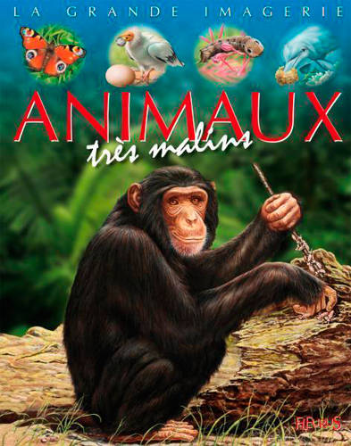Animaux très malins