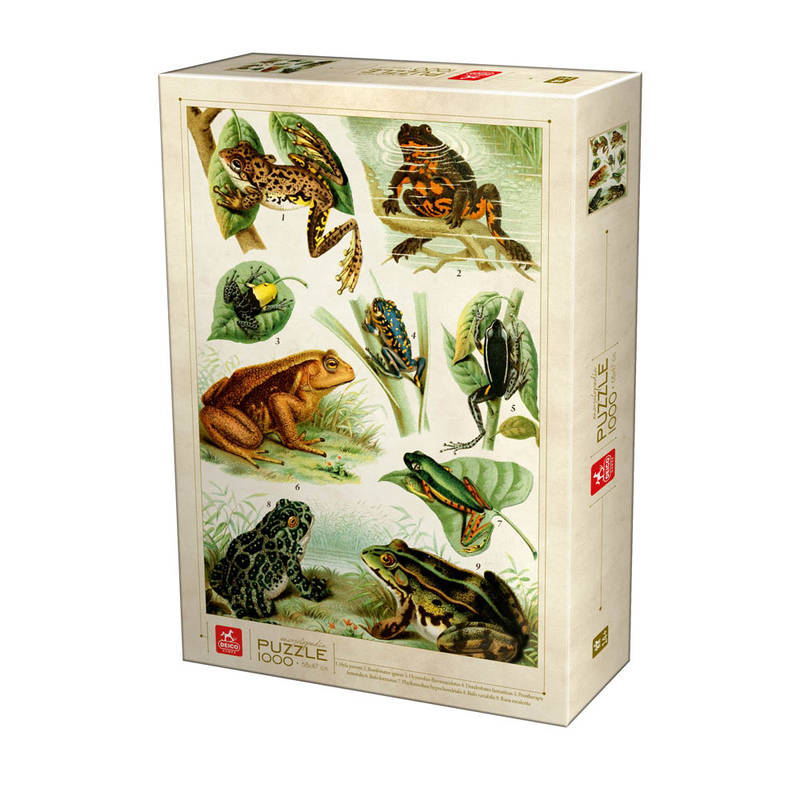 PUZZLE 1000PCS ENCYCLOPEDIA FROGS