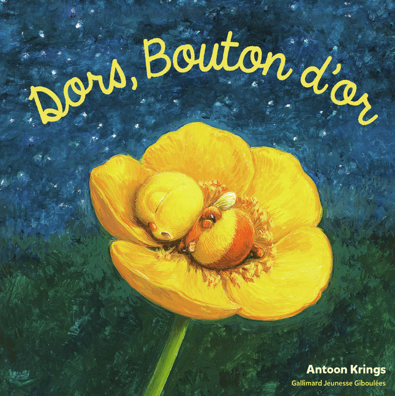 Dors, Bouton d'or