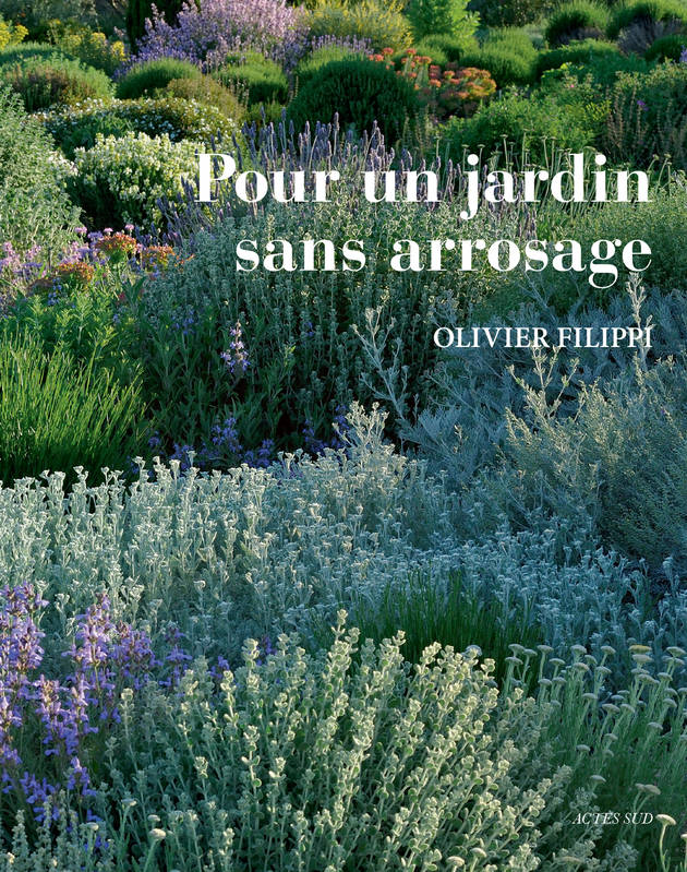 livre pour un jardin sans arrosage olivier filippi actes sud nature 9782742767304. Black Bedroom Furniture Sets. Home Design Ideas