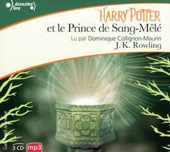 Harry Potter, VI : Harry Potter et le Prince de Sang-Mêlé, Harry Potter et le Prince de Sang-Mêlé