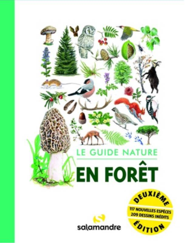 En forêt : le guide nature