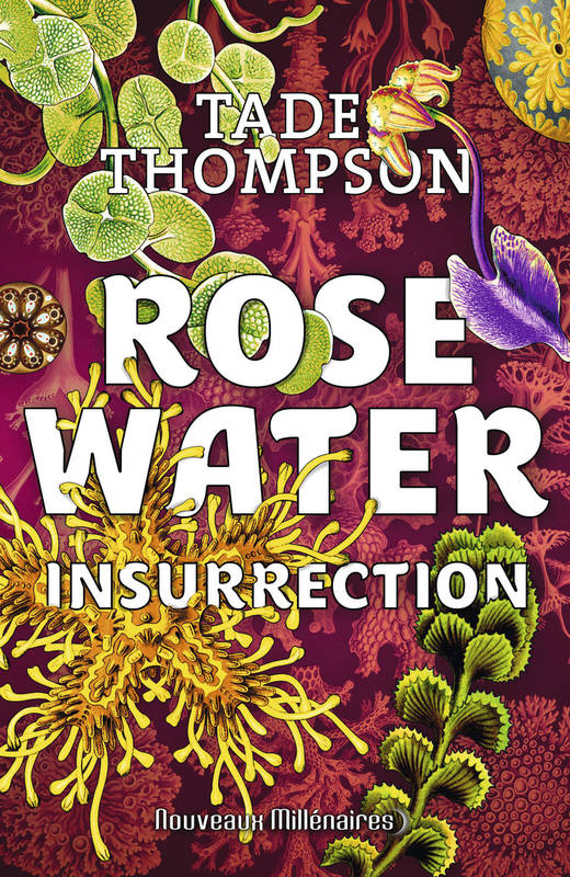 Rosewater / Insurrection
