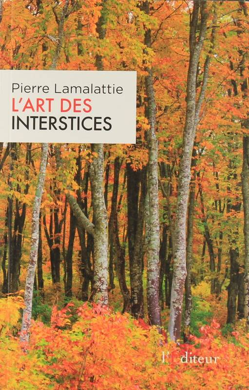 L'art des interstices