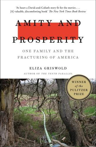 Amity and Prosperity, One Family and the Fracturing of America