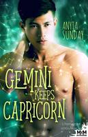 Gemini Keeps Capricorn, L'horoscope amoureux, T3