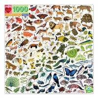 Puzzle Rond - Rainbow World - 1000 pièces