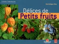 DELICES DE PETITS FRUITS