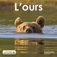 Lecture CP - Collection Pilotis - Album 2 L'Ours - Edition 2013