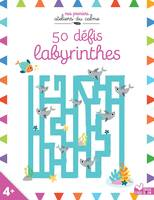 50 défis labyrinthes