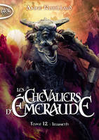 LES CHEVALIERS D'EMERAUDE - TOME 12 IRIANETH