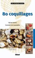 80 coquillages