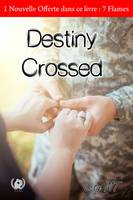 Destiny Crossed, Romance