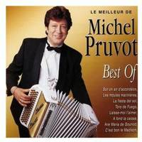le meilleur de michel pruvot best of