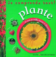 Plante, graines, fruit, pousse, bogue