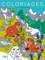 Grands Coloriages Montagne
