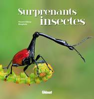 Surprenants insectes