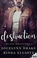 Destruction, Des Liens Indestructibles, T2