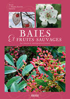 Baies et fruits sauvages de France métropolitaine